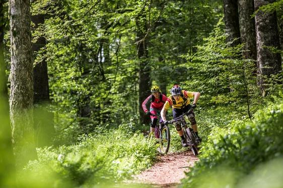 Gipfeltrail Hochschwarzwald - 2-Etappentour