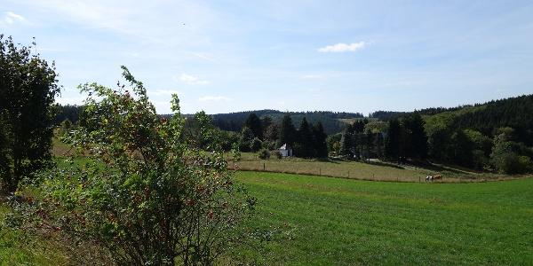 Blick auf die kleine Siedlung Holt