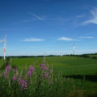 Die Windkraftanlagen von Elsenborn