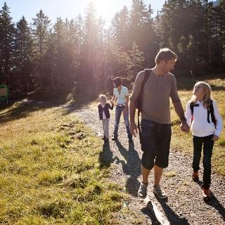 Rundweg führt durch Flachmoorwiesen und einen Hochmoorwald.