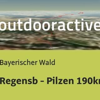 Fernradtour im Bayerischen Wald: Regensb - Pilzen 190km