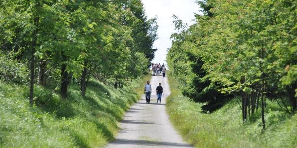 Wanderweg Kahlebergebiet