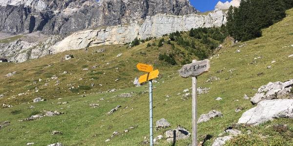 Rert Lohner signpost and alpine meadows