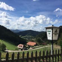 Foto von Wanderung: Ein Stück auf dem Westweg • Schwarzwald (22.09.2018 16:13:37 #3)