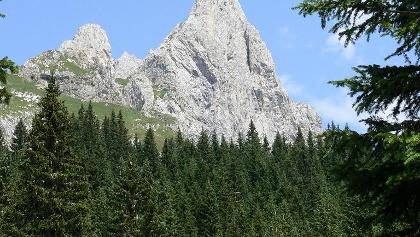 Il monte Chiadènis visto da ovest. Più a sinistra il Pic
