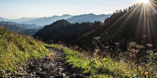 Weg vom Walmendingerhorn zur Walmendinger Alpe