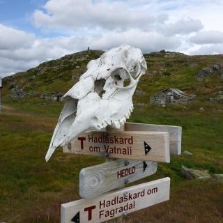 Wegweiser in Finnabu (6. Etappe Stavali - Hedlo)