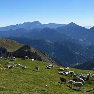 Below the summit of Begunjščica
