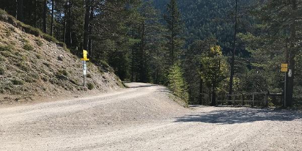 Auf einem breiten Fahrweg stetig bergauf zur Möslalm und Pfeishütte