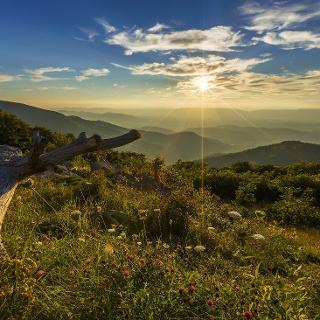 Landscape in Shenandoah National Park, VA