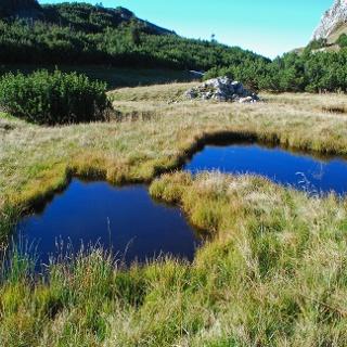 Kleine Lacken im oberen Karlgraben
