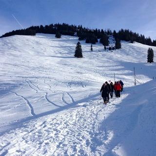 Auf dem Winterwanderweg von Nüegg  nach Riedli.