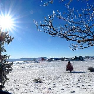 Winterliche Juralandschaft unterhalb des Mont Raimeux.