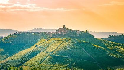 Barolo Wine Region, Piedmont, Italy