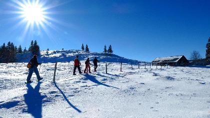 Schneeschuhwandern am Col du Mollendruz.