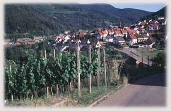 Rechts der Murg von Weisenbach nach Langenbrand und zurück