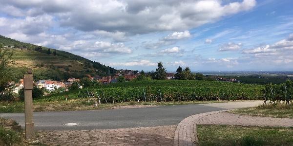 Blick über St. Martin unterhalb der Kropsburg
