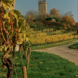 Sulzfeld - Burg Ravensburg