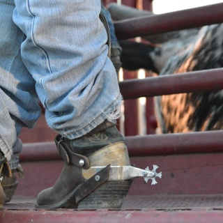 Cowboy boots at a Rodeo in Texas