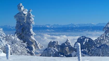 Alpensicht auf der Weissensteiner Haute Route.