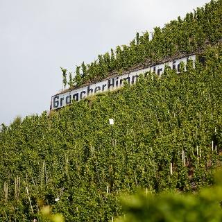Weinlage