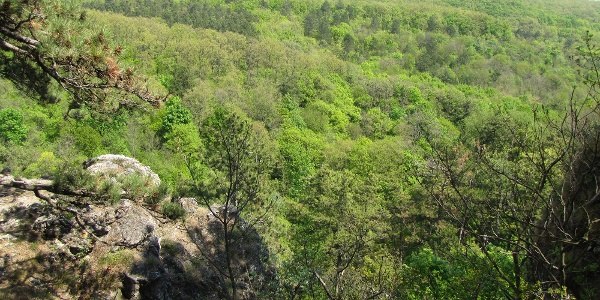 Kilátás a Koloska-sziklákról