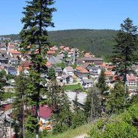 Blick auf Tennenbronn vom Mittelberg