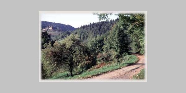 Blick zum Schloß Eberstein