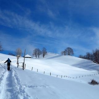 Solothurner Schneeschuhtour zum Hofbärgli.