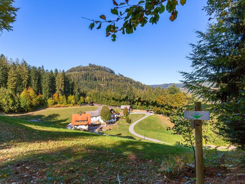 """Schwarzwälder Wandersinfonie:  Der  Wiesensteig in Bad Peterstal-Griesbach - eine Tour  für """"Genusssucher"""""""