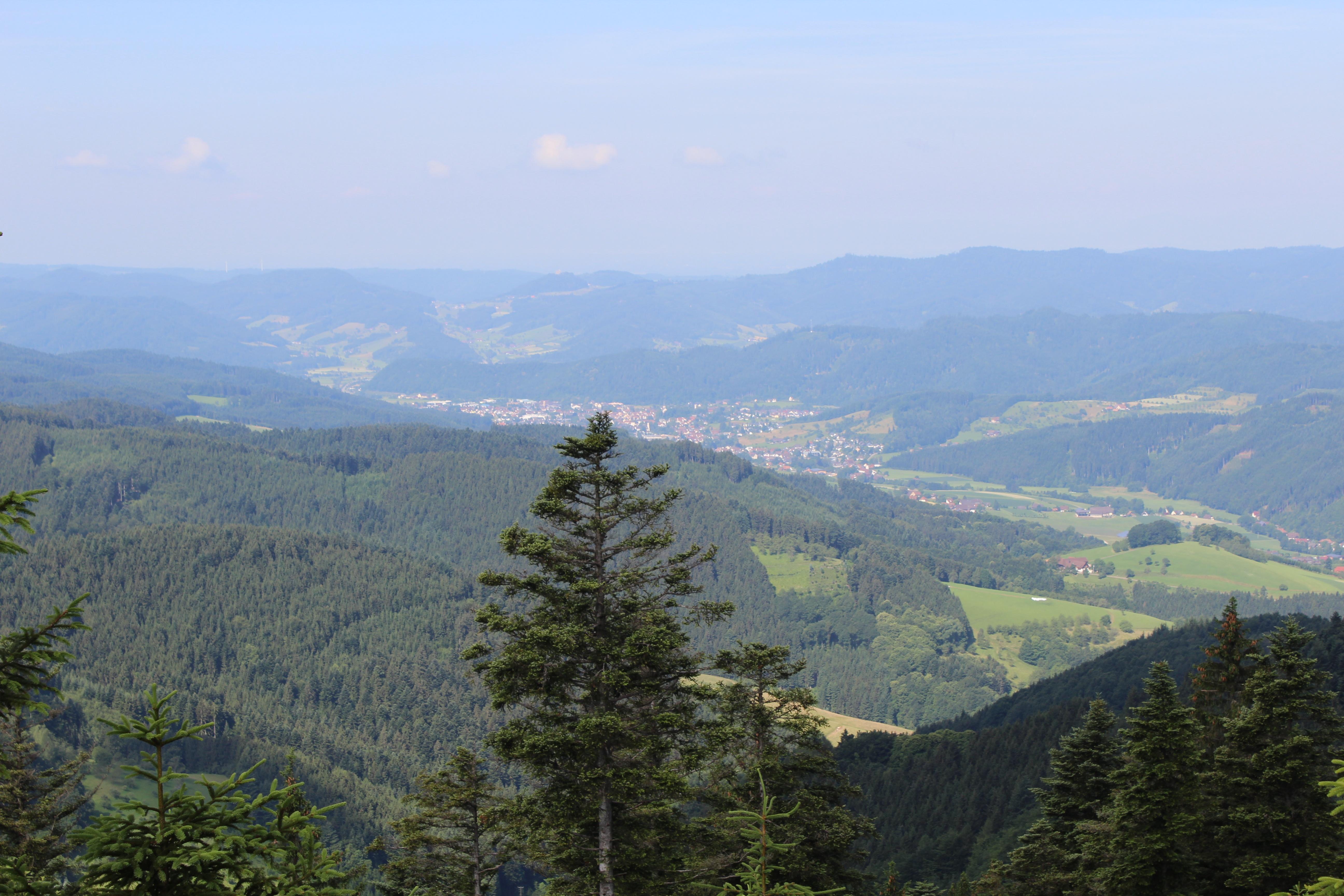 Blick nach Zell am Harmersbach
