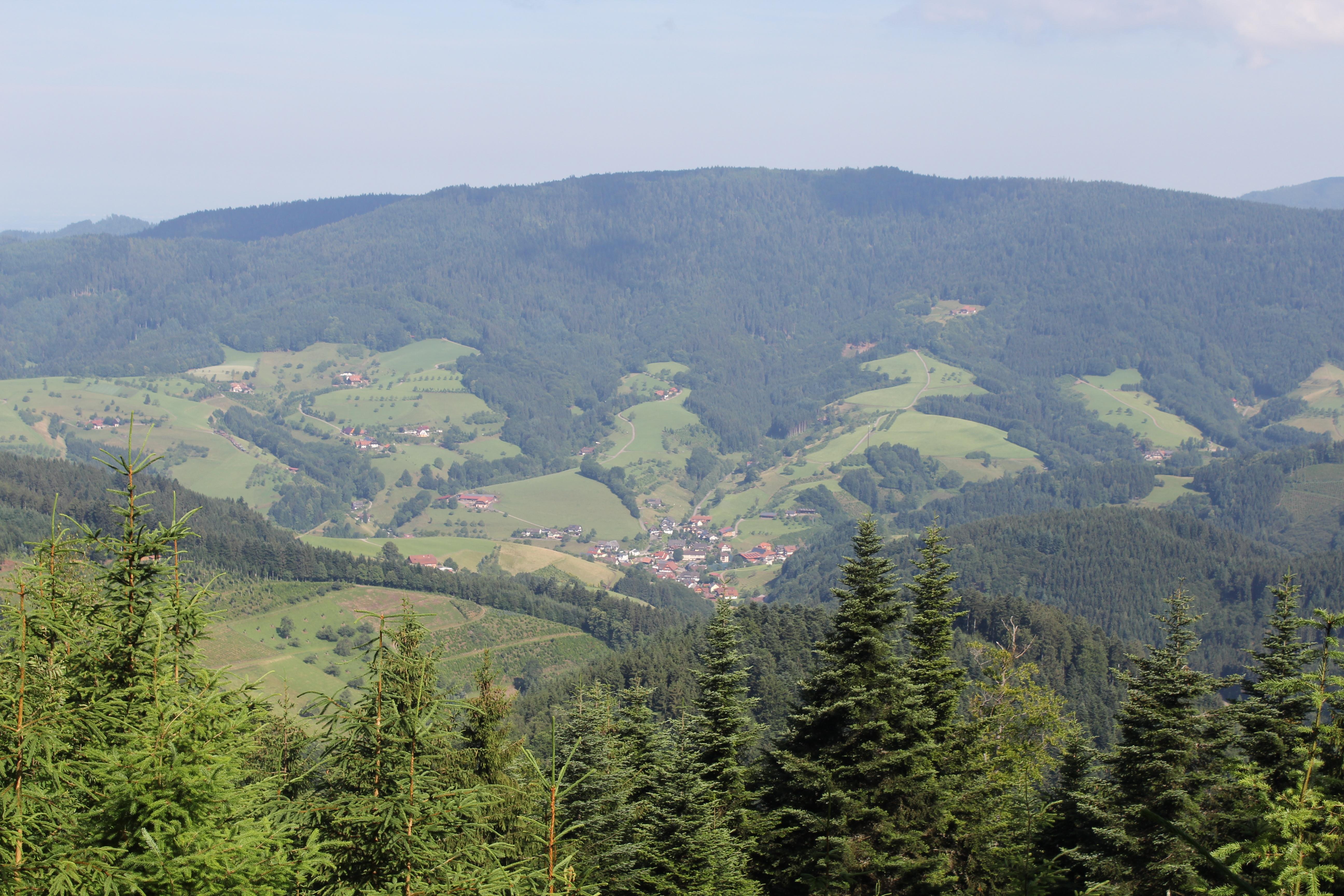 Blick nach Oberharmersbach