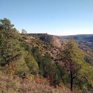 Blick auf die mittlere Horizontale im geologisch interessanten Penickental