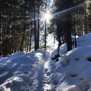 Snowshoe trail from St-Jean to Mayoux
