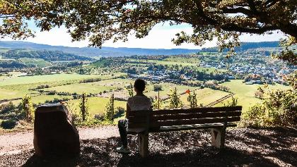 "Blick vom höchsten Punkt der ""Ayler Kupp"" hinab ins Saartal"