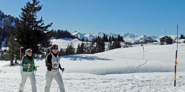 Ibergeregg, Schneeschuhtrail