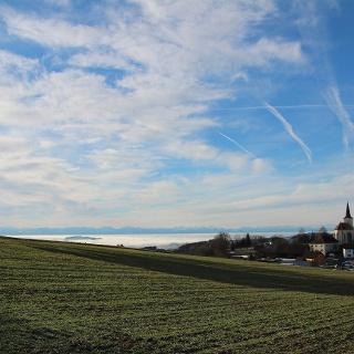 Herrliche Aussicht vom Friedenskreuz in St.Oswald (Alpenblick und ins Yspertal)