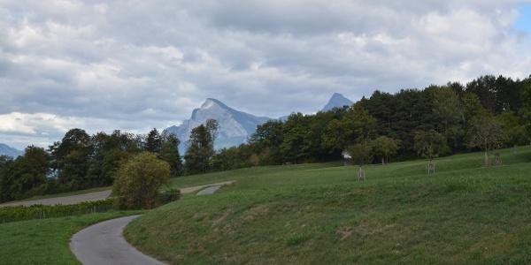Ausblick richtung Fläscherberg