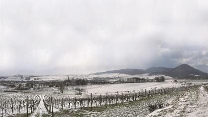 Winterlandschaft bei Siebeldingen