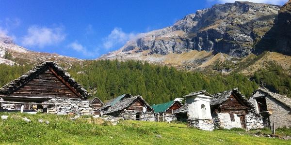 Alpe Magnello
