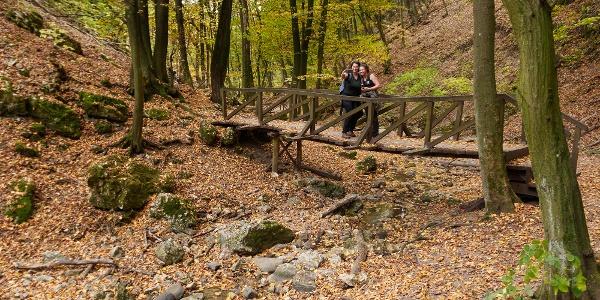 Dera gorge in autumn.