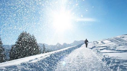 Wanderer auf dem Winterwanderweg zur Vorder Höhi