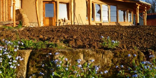 Das Bienenhaus - Schaumburger Waldimkerei