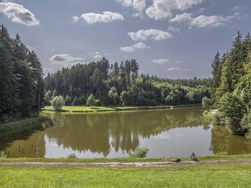 Hagerwaldsee   - © Quelle: Agentur arcos