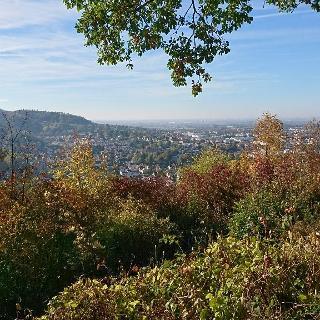 Fernblick über Weinheim