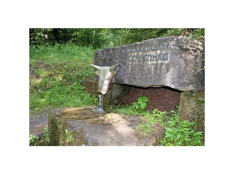 Brunnen Ochsenhau   - © Quelle: Agentur arcos
