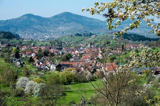 Panorama-Rundweg Loffenau