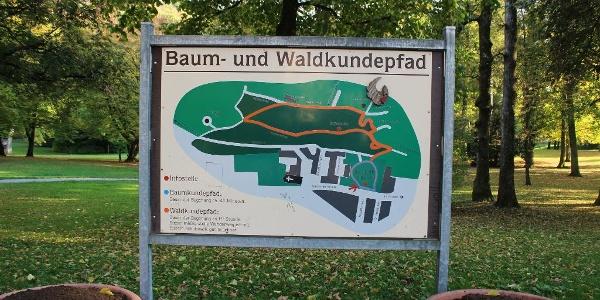 Der Baum- und Waldkundepfad im Karlspark