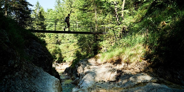 Brücke über den Weissbach am Der Wald-Idyll-Pfad