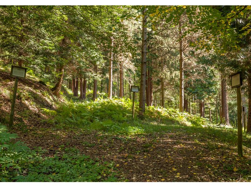Arboretum   - © Quelle: Agentur arcos
